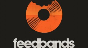 Is Feedbands A Scam Or Is It Just Useless: Review